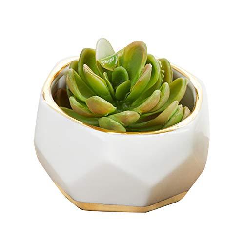 Geometric Ceramic Planter - 12 pcs - Kate Aspen Faceted Flower Pot, Succulent Planter Party Favor, Guest Gift Decor for Wedding, Bachelorette, Bridal Shower, Birthdays Parties - Plant Not Included ()