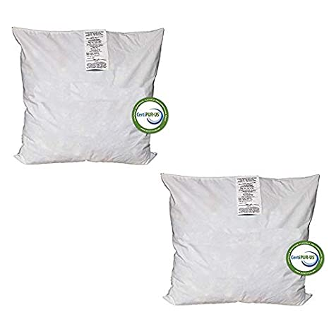 Stupendous Amazon Com Izo All Supply 12X20 Pillow Inserts Firm Plush Bralicious Painted Fabric Chair Ideas Braliciousco