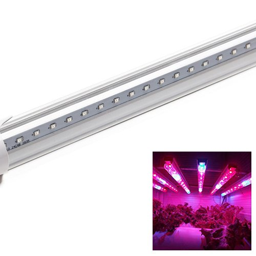 Superdream LED Plant Grow Tube Light 8W 56pcs Red Blue Growing Fill Lights for Indoor Plant Germinating Hydroponic Flowing Seeding Green House Gardening Hydroponics