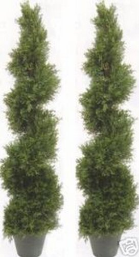 Two 5 Foot 4 Inch Artificial Cypress Spiral Trees Potted Indoor or Outdoor by Silk Tree Warehouse