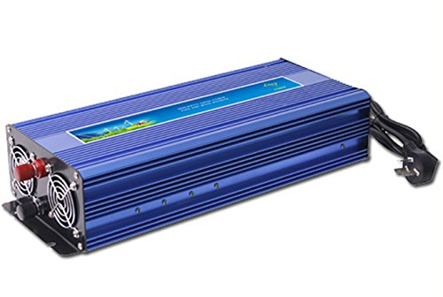GOWE 1000W Off Grid Inverter Pure Sine Wave Inverter DC12V or 24V or 48V input, Wind Turbine Inverter by Gowe?