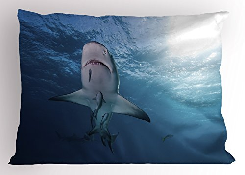 "Ambesonne Sea Animals Pillow Sham, Baby Sharks Fish Bahamas Predator Sunburst Under The Water View Photo Print, Decorative Standard Size Printed Pillowcase, 26"" X 20"", Blue White"