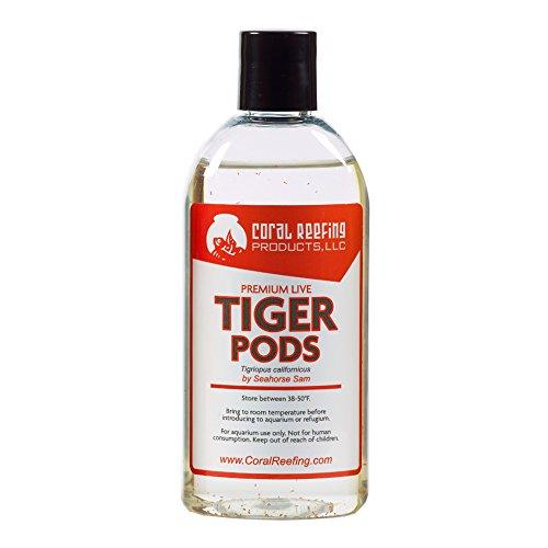 500+ Premium Live Tigriopus Pods (Tigger Pods)
