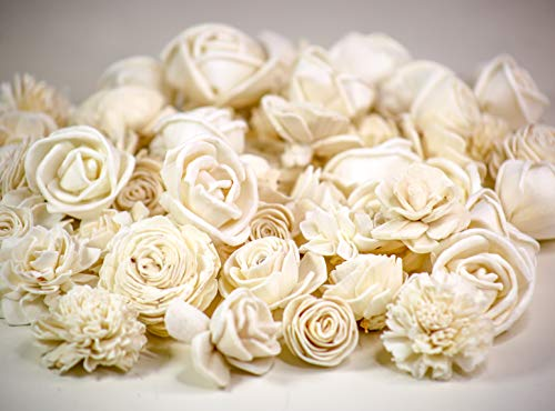Sola Wood Flowers - Skinless Mini Flower Assortment (Pack of 50) ()