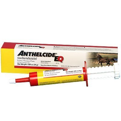 Pfizer Anthelcide EQ Paste 24gm