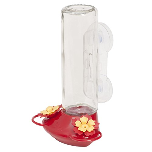 Perky-Pet 355255 Window Mounted 14 Oz Glass Hummingbird Feeder, Red ()