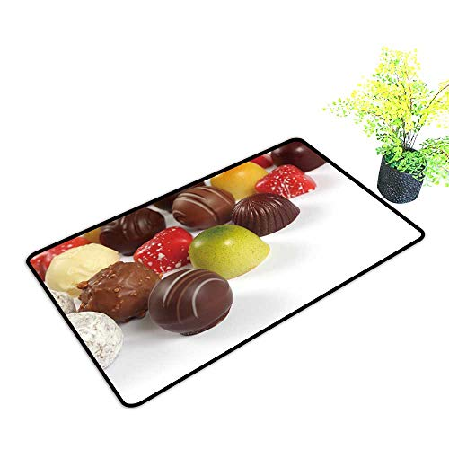 Large Outdoor Door Mats Photo ssorte Truffles pralines Liqueur fille Chocolates Use for Entrance Outside Doormat Patio W17 x H13 INCH