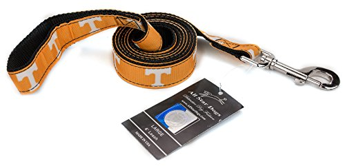 All Star Dogs 1 Inch Tennessee Volunteers Ribbon Dog Leash - 6 Foot