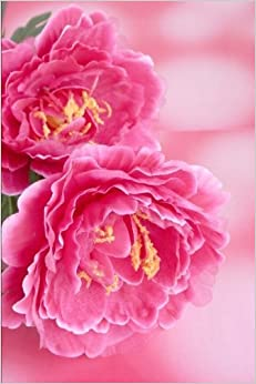 Indiana State Flower - Peony Journal: 150 page lined notebook/diary
