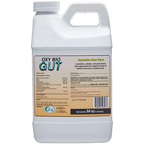 Oxy Bio Gut by Oxy-Gen | Daily Gastric Support, Ulcer Prevention, Prebiotic, Probiotic and Yeast Based Supplement | Half Gallon (30 Say Supply) | Made in USA