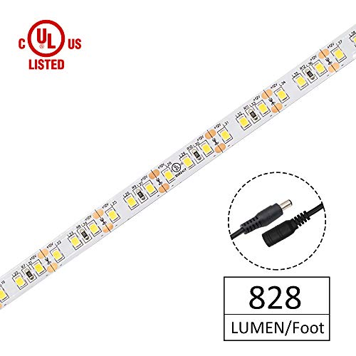 12V Led Rope Lighting By The Foot in US - 3