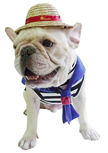 Accessory Frenchie straw Hat with French Bulldog Red Ribbon for Pet or Cat Use (Frenchie Costumes)