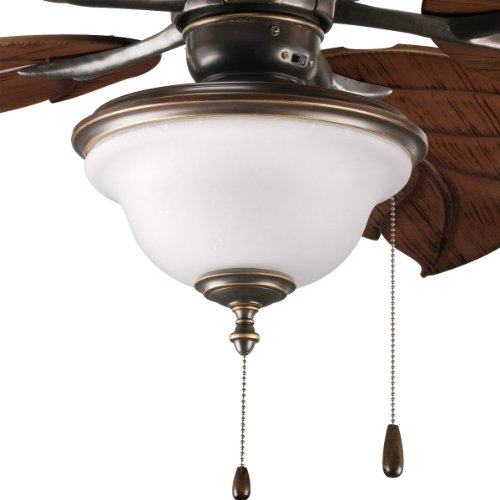 Progress Lighting P2636-20 2-Light Indoor/Outdoor Fan Light Kit with Frosted Seeded Glass, Antique Bronze ()