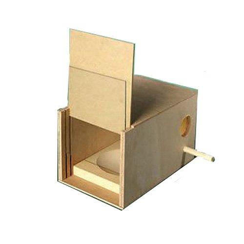 Budgie Nest Box Kit The Hutch Company PPI4291