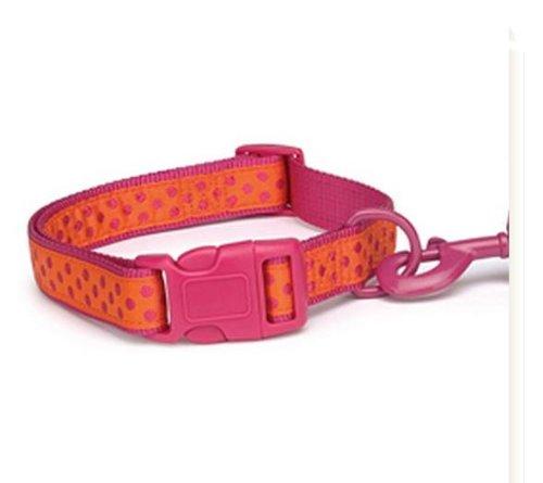 Zack and Zoey Nylon Brite Polka Dot Dog Neck Collar, 18 to 26-Inch, Raspberry, My Pet Supplies