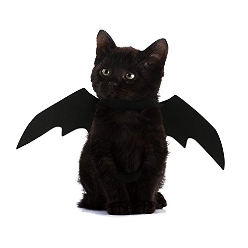 FLAdorepet Halloween Pet Dog Bat Wings Cat Bat Costume (S, Black) -