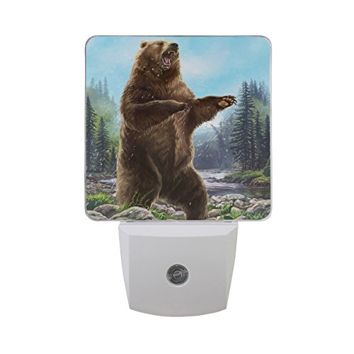 Plug-in LED Night Light Lamp Aggressive Bear Printing with Dusk to Dawn Sensor for Kids Bedroom, Bathroom, Hallway, Stairways, 2 Pack-0.5W - Bear Printing