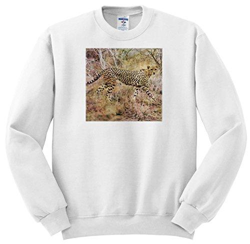 Andrea Haase Animals Illustration - Young African Cheetah Watercolor Illustration - Sweatshirts - Youth Sweatshirt Large(14-16) - Pics Girls Cheetah