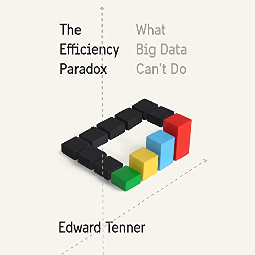 The Efficiency Paradox: What Big Data Can't Do