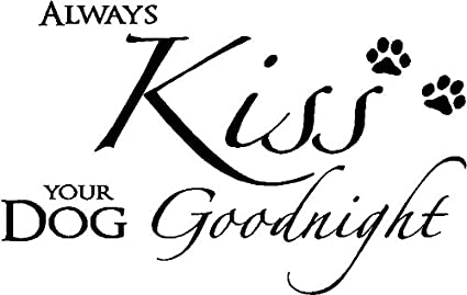 Amazon Com Always Kiss Your Dog Goodnight Cute Puppy Wall Art Wall