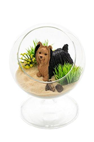 Yorkshire Terrier Gift   Terrarium Kit   Yorkshire Terrier Lovers Terrarium Design Kit   Dog Breed Series   Complete DIY Gift Set   Glass Globe w/ Stem   Nautical Crush Trading TM