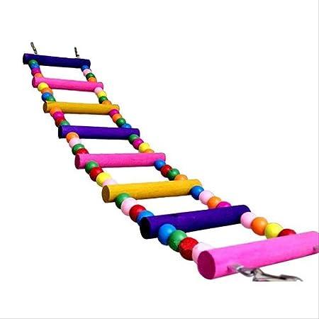 dontdo Multicolor Échelle Pont perruches Parrot Escalade Bite Jouet Perruche Swing Bird Toy Brain Jeu Outil d'entraînement