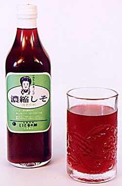しそジュース 国産 無添加 朝採り赤シソ 濃縮 500ml 12本入 手作り 100% 種子島の茶色の粗糖使用