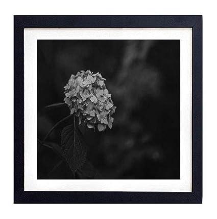 3be65c093dc GLITZFAS PRINTS Framed Wall Art - Hydrangea Blue Inflorescence Leaves Blur  - Art Print Black Wood