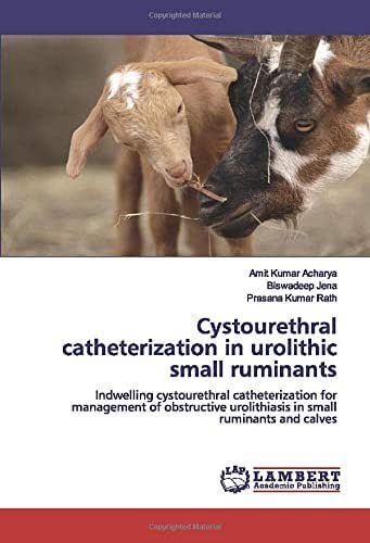 Cystourethral catheterization in urolithic small ruminants: Indwelling cystourethral catheterization for management of obstructive urolithiasis in small ruminants and calves