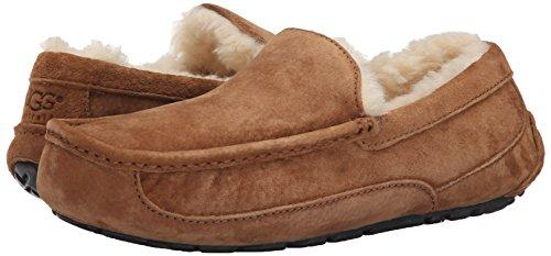Large Product Image of UGG Australia Men's Ascot Slippers, 11, Chestnut