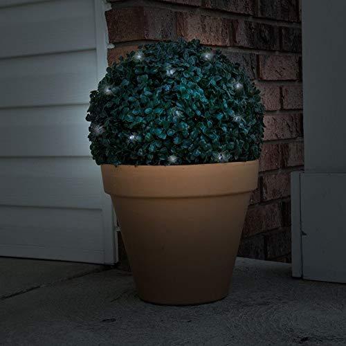 Topiary Garden Lights in US - 6