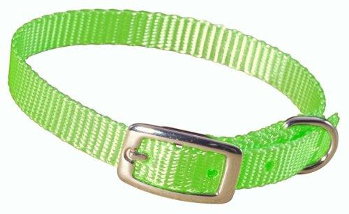 """Hamilton 3/8"""" Single Thick Nylon Deluxe Dog Collar, 14"""", Lime Green"""