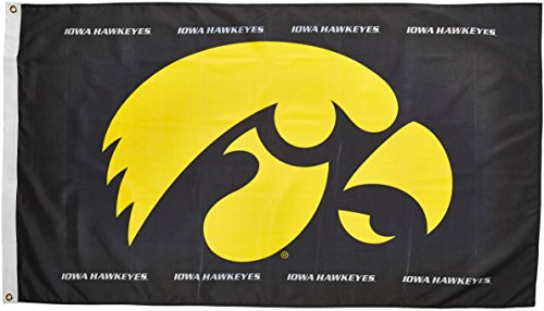 Hawkeyes Iowa Ncaa (NCAA Iowa Hawkeyes 3-by-5 Foot Flag Hawk Logo with Grommets)