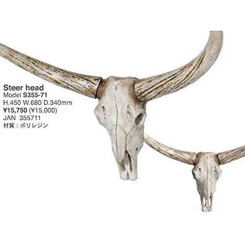 [DULTON]ダルトン Steer head S355-71 壁飾り B00M5X3EYE
