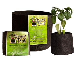 smart pots 2 gallon - 7