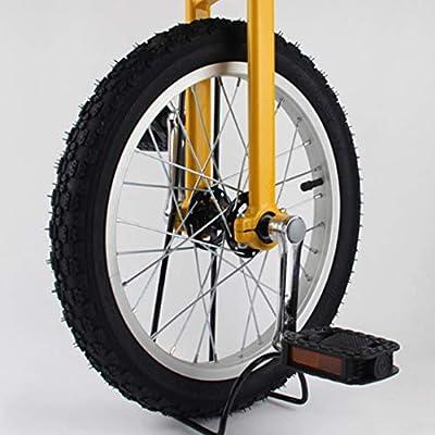 Carretilla de Bicicleta Infantil Adulto de 16 Pulgadas, monoplace ...