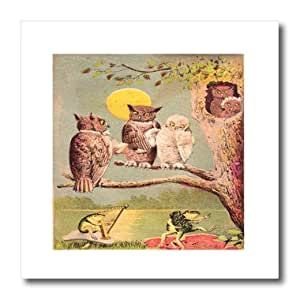 ht_109781_1 Florene Vintage - Vintage Owls Watch As Frogs Dance - Iron on Heat Transfers - 8x8 Iron on Heat Transfer for White Material
