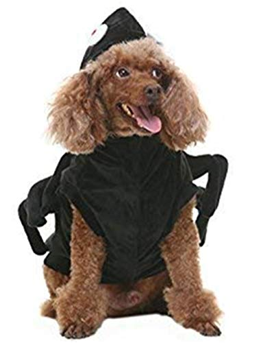 BINGPET Spider Dog Halloween Costume Black Small]()
