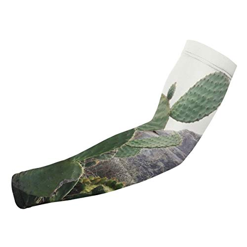 XCSADE Prickly Pear Cactus Growing Against Sky Sports Compression Arm Sleeves 1 Pair - 2 Sleeves Youth & Adult Sizes Football Baseball Basketball Cycling Tennis