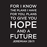 Christian Beverage Napkins - Jeremiah 29:11 I Know the Plans (3-ply) 20 Count