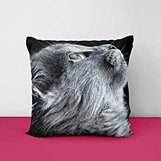 41l0uWXKgGL. SS320 Cat Square Design Printed Cushion Cover