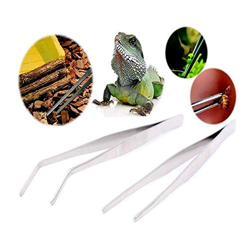 MOOZON 12 Inch Stainless Steel Food Tweezer Straight and Curved Tweezers Feeding Tongs for Aquarium Reptile 2 Pcs Silver