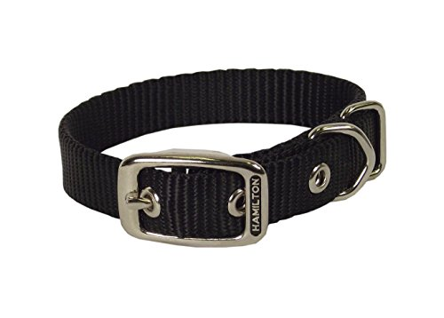 Deluxe Single Thick Nylon Collar - Hamilton 1-Inch Single Thick Nylon Deluxe Dog Collar, 22-Inch, Black