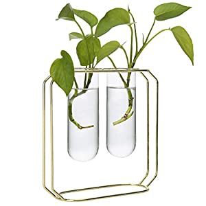 MyGift Desktop Planter Set with 2 Glass Tube Vases & Gold-Tone Metal Stand 46