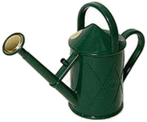 Haws Heritage Indoor Plastic Watering Can, 0.25-Gallon/1-Liter, Green Bonsai Watering Can