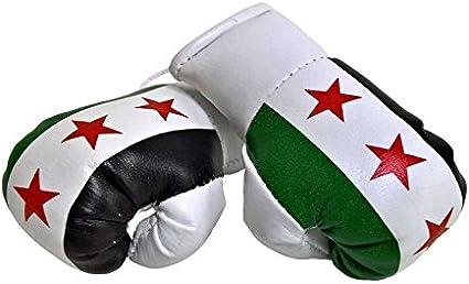 für Auto Innenspiegel Kunstleder Geschenk Paar Mini Boxhandschuhe Kurdistan z.B
