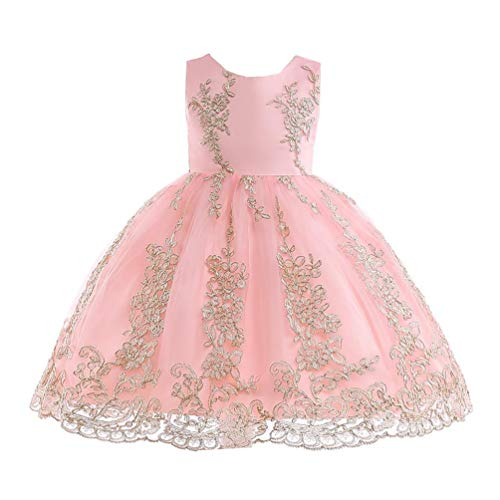 JIANLANPTT Elegant Embroidered Tulle Lace Floral Flower Girls Dress Baby Girl Party Dress 6-7Years Pink 3 -