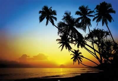 Palm Tree Silhouettes Tropical Ocean Beach Scenic Travel Poster 24 X 36 Inches