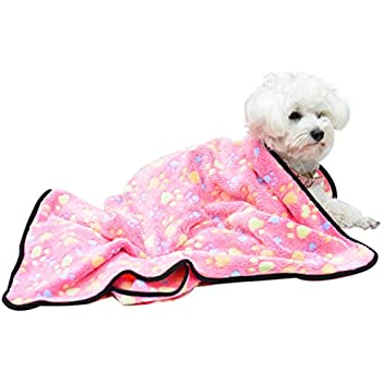 Love Pet Blanket for Small Cats & Dogs Thick 7652cm