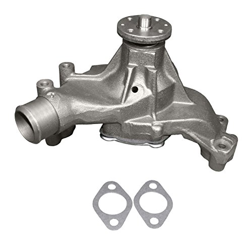 (ACDelco 252-722 Professional Water Pump Kit)